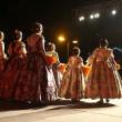 Preseleccionadas 2015 candidatas a Cortes de Honor y Falleras Mayores de Valencia de 2016