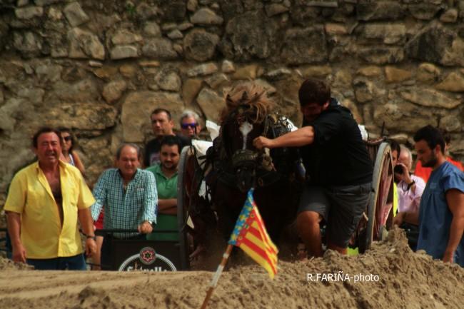 Primeras jornadas del XI Concurso de Tiro y Arrastre Ciudad de Valencia (8)